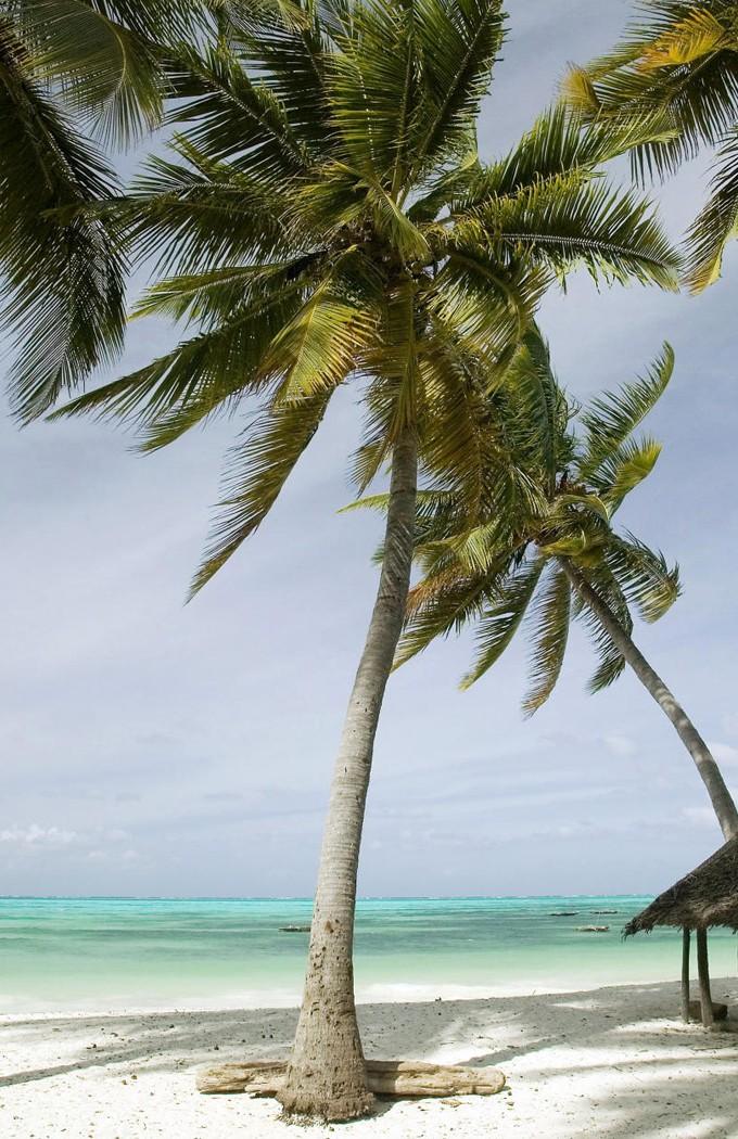 Картинка: Танзания, остров Занзибар