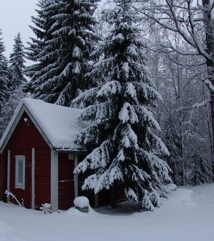 romantic-winter-nature-in-Finland